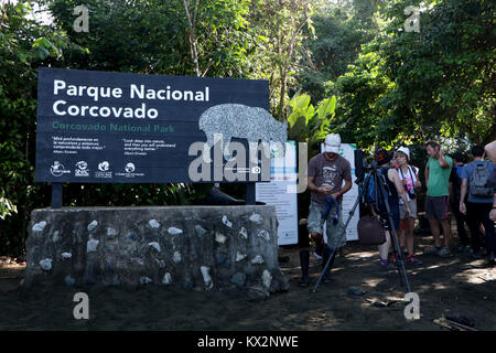 Hiker on trail Corcovado national Park Osa Peninsula Costa Rica in primary rain forest. Tropical Jungle tree - Stock Image