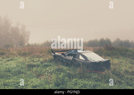 Black car in a high yellow grass in a field by the forest in the morning fog - Stock Image