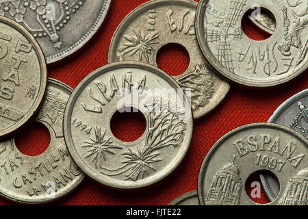 Coins of Spain. Canary Islands dragon tree (Dracaena draco) depicted in the Spanish 25 peseta coin (1994). - Stock Image