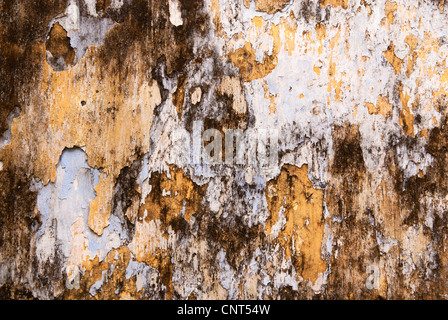 Weathered wall, Hoi An, Viet Nam - Stock Image