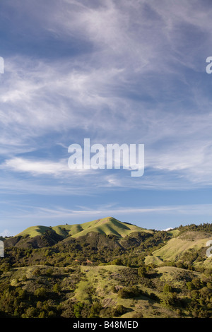 View of White Hill from Fairfax Bolinas Road Marin County California USA - Stock Image