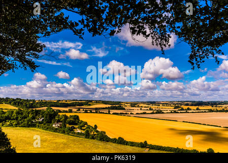 Early morning view at Sharpenhoe outcrop, Bedfordshire, UK - Stock Image