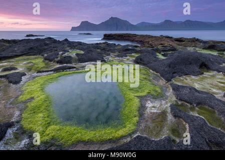 Algae coated rock pools at sunset on the basalt rock ledge seashore of Gjogv in the Faroe Islands, Denmark. Summer (June) 2017. - Stock Image
