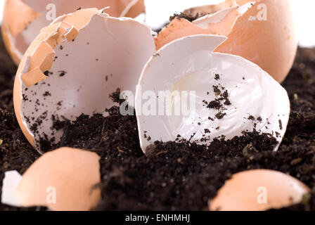 Compost material on soil. Cross section.  Close up - Stock Image