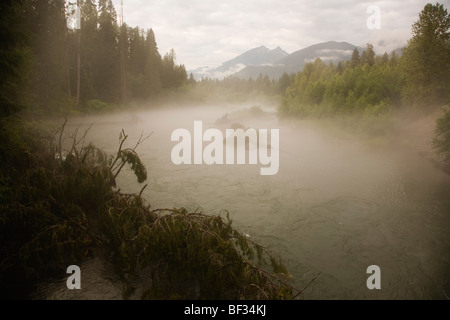 Fog enshrouds the Skagit River in Skagit Valley Provincial Park, British Columbia, Canada - Stock Image