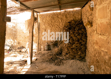 Cow dung is piled and stocked to provide fuel for a Bishnoi family in India. - Stock Image