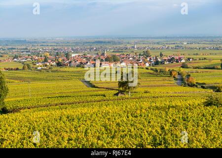 Deutschland, Rheinlandpfalz, Blick von der Villa Ludwigshöhe nach Rhodt - Stock Image