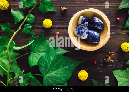 Polished Sodalite with Ivy and Craspedia on Dark Wood - Stock Image