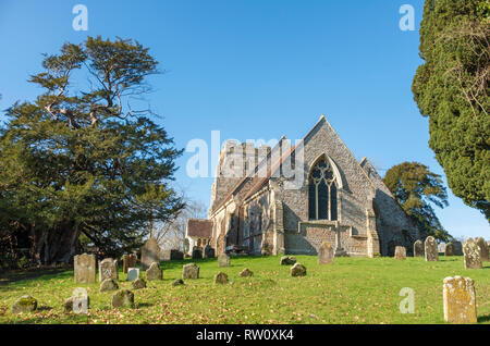St George's Church, Crowhurst, East Sussex, UK with a famous ancient yew tree, reputedly over a 1000 years old, seen on the left of the picture. - Stock Image