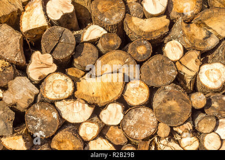 Stacked chopped logs for firewood - France. - Stock Image