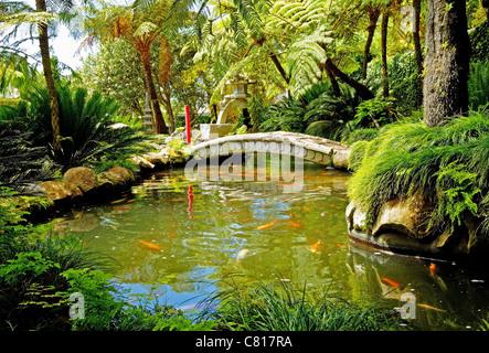 Japanese Garden Water Bridge - Stock Image