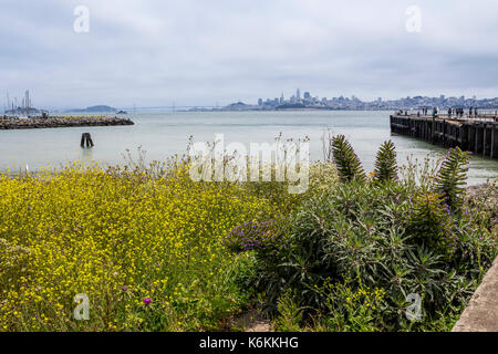 flora, vegetation, people, view toward San Francisco from Fort Baker, Fort Baker, city of Sausalito, Marin County, California, United States - Stock Image