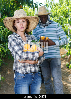 Portrait of happy young woman standing in fruit garden with pile of ripe peaches in hands - Stock Image