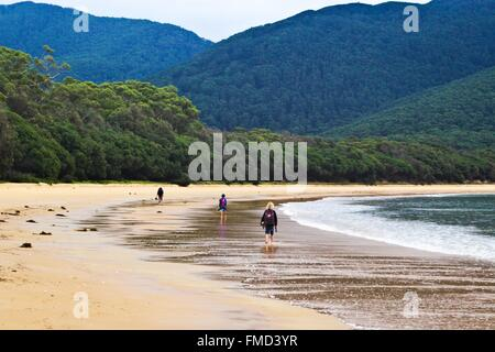 Three hikers walking along the deserted beach at Sealers Cove, at Wilson's Prom, Australia. - Stock Image