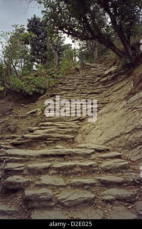 Stone staircase from Tatopani to Sikha on Annapurna circuit Himalayas Nepal - Stock Image