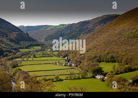 Rheidol Valley, Ceredigion, Wales, UK - Stock Image