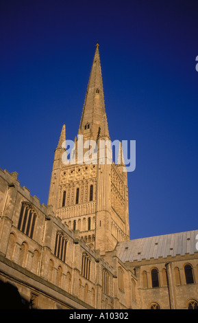 Norwich Cathedral Norwich England - Stock Image