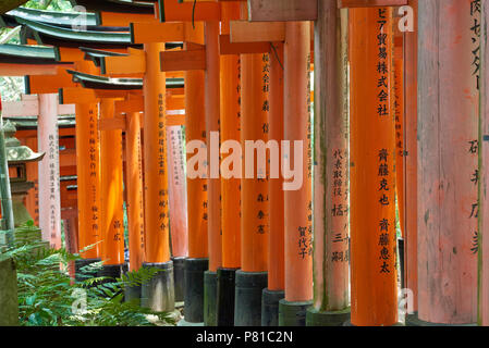 Detail of row of Senbon Torii gates in Fushimi Inari Shrine in Kyoto, Japan. The donation of the traditional red gates are believed to grant wishes to - Stock Image