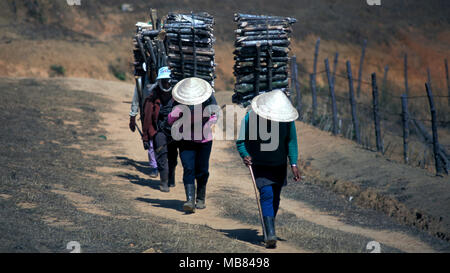 Indigenous Koho people walk back to their village in northwest Vietnam after collecting firewood. - Stock Image