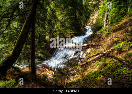 Waterfall in the mountain. Full spring river - Stock Image