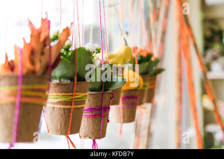 Hanging pots - Stock Image