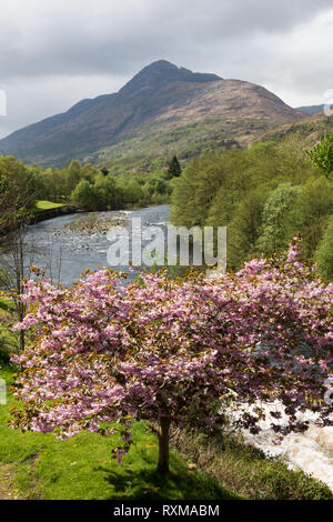 Mam n Gualainn and the River Leven, Kinlochleven, Lochaber, Scotland, UK - Stock Image