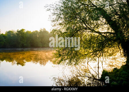 English landscapes. Early morning sunlight and mist on the River Trent in the Nottinghamshire countryside, England, UK - Stock Image