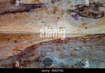 Old wood showing signs of wear and stain - Duo Toned - Stock Image