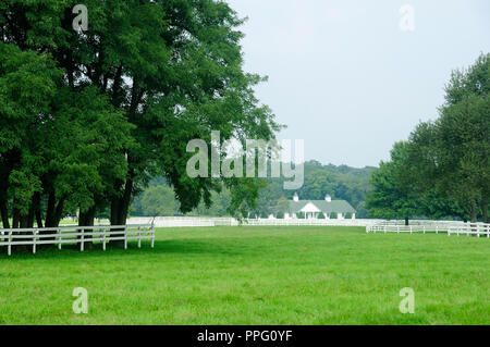 Horse farm pasture with trees ,fencing, and barn in background. - Stock Image