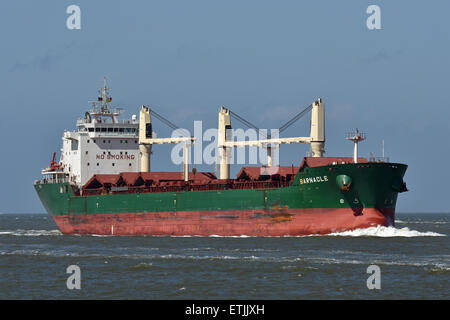 Lakesize Bulkcarrier Barnacle passing Cuxhaven - Stock Image
