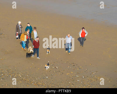 A group of people walking their dogs on the beach on a sunny autumn day in North Yorkshire - Stock Image