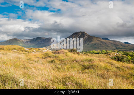 View across bog towards the Twelve Bens (Beanna Beola) mountain range of Connemara, from outside the village of Letterfrack, County Galway, Ireland - Stock Image