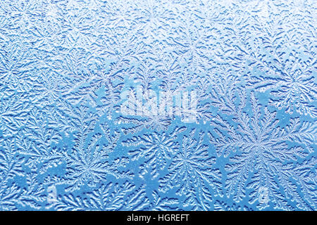 bacterial pattern like a frost - Stock Image