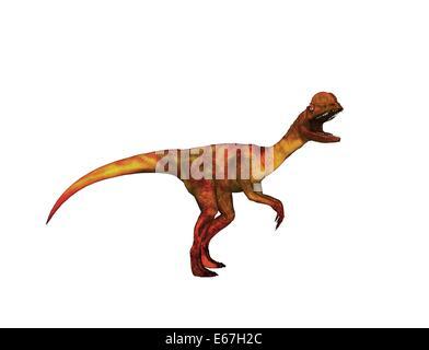 Dinosaurier Dilophosaurus / dinosaur Dilophosaurus - Stock Image