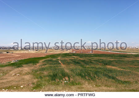 Bedouin Farming, Agriculture on the Outskirts of Amman Jordan - Stock Image