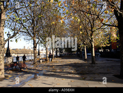 South Bank Promenade Autumn London - Stock Image