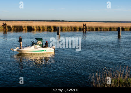 People fishing, small motorboat, Barther Bodden, reed covered waterfront, Baltic Sea, peninsula of Fischland-Darß - Stock Image