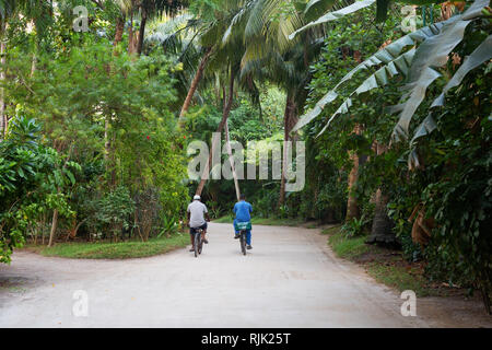 Two local people cycling along a road, Rasdhoo atoll, the Maldives, Asia - Stock Image