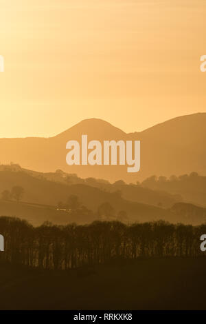 Powys, UK. Evening view over the peaceful Radnorshire countryside near Presteigne in mid-Wales, towards the conical hill known as the Whimble - Stock Image
