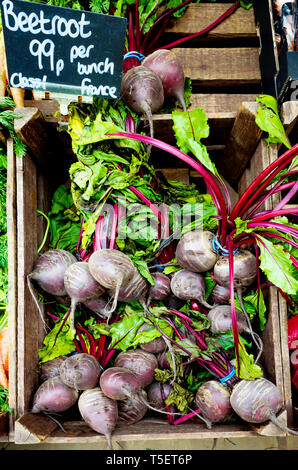 An attractive display of bunched beetroot with spring 2019 price ticket £0.99 per bunch for French Class 1 vegetables in a Yorkshire shop - Stock Image