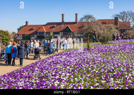 Wisley RHS Gardens, Surrey, England, UK. 27th February 2019. Crowds flock to see the magnificent display of crocuses in unseasonably warm spring sunshine. Credit: Tony Watson/Alamy Live News - Stock Image
