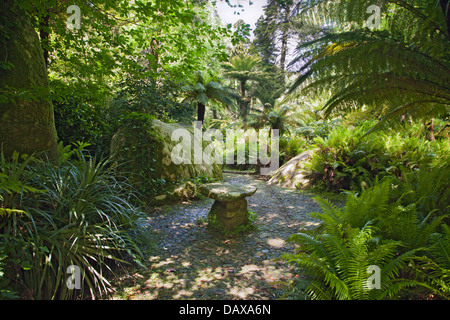 Sintra Gardens, Pena. Hidden away in the forest glade a stone table. - Stock Image