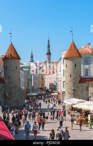 Tallinn summer city, view of the Viru Gate in Tallinn - the eastern entrance to the central medieval Old Town quarter of the city, Estonia. - Stock Image