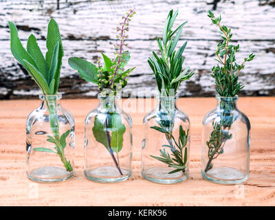 Bottle of essential oil with herbs rosemary, sage,holy basil and thyme  set up on old wooden background . - Stock Image