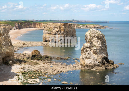 View north past sea stacks in Marsden Bay, including Marsden Rock, north east England, UK - Stock Image