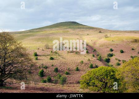 Sugar Loaf, Black Mountains, Wales UK - Stock Image
