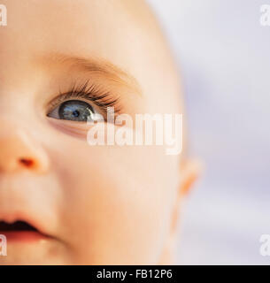 Close-of baby boy's (6-11 months) blue eye - Stock Image
