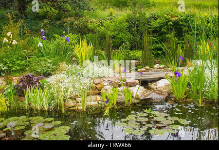 A pond in a north east Italian garden during the spring - Stock Image