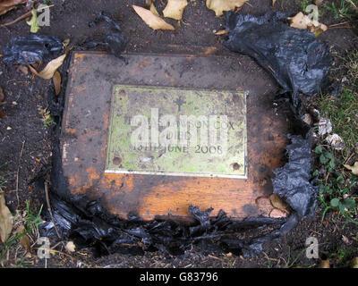 Ashes found in garden - Stock Image