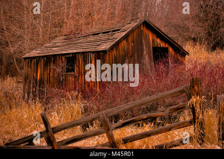old tool shed - Stock Image